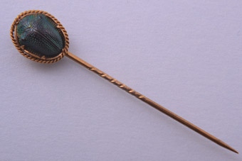 Gold Plated Edwardian Stick Pin With A Genuine Scarab Beetle